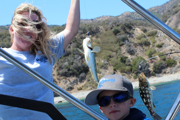Fish In The Wind