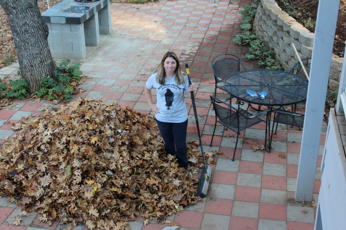 Big Pile 'O Leaves