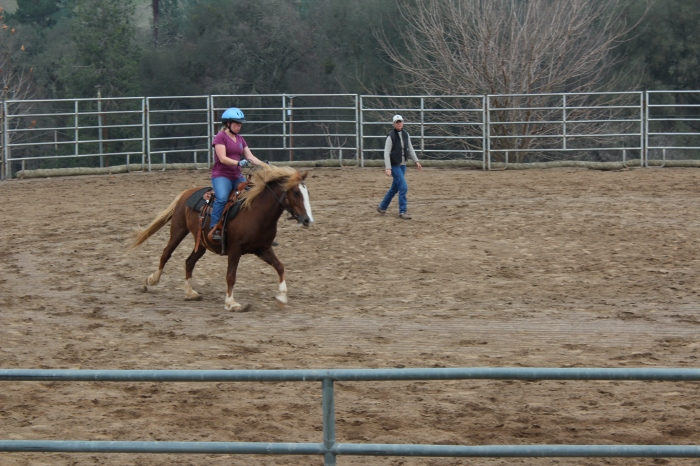 Rosie Loping In The Arena