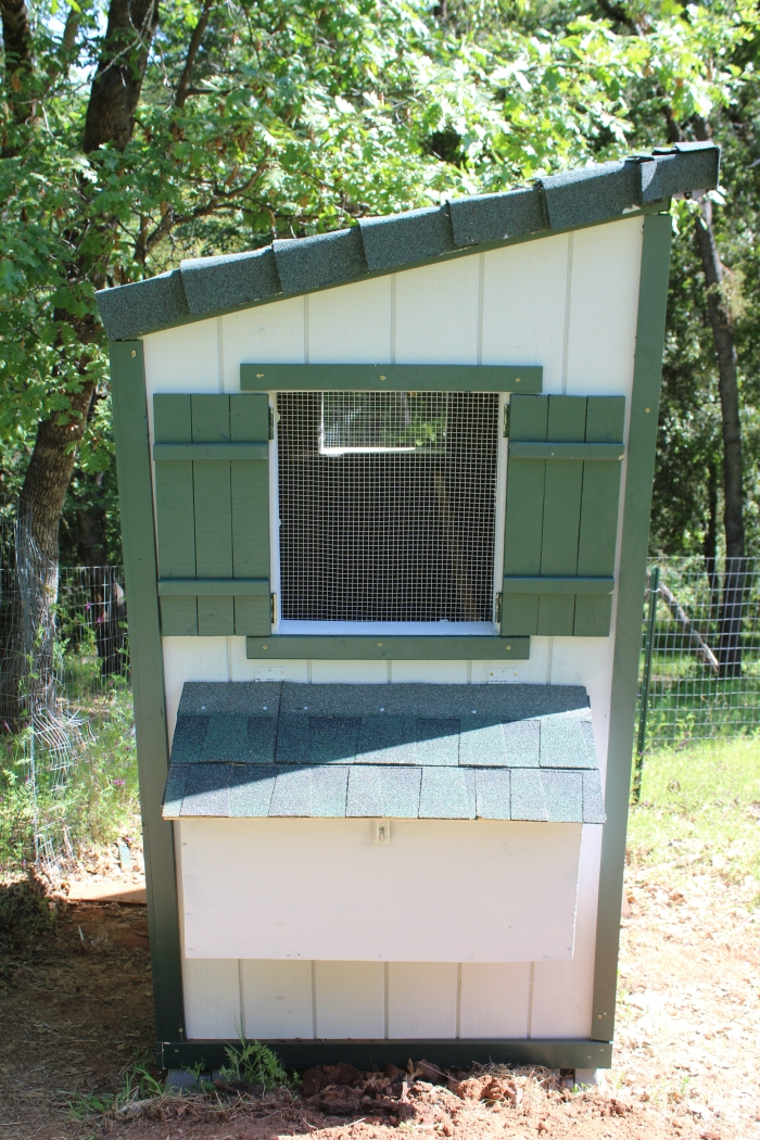 Side View of the Coop