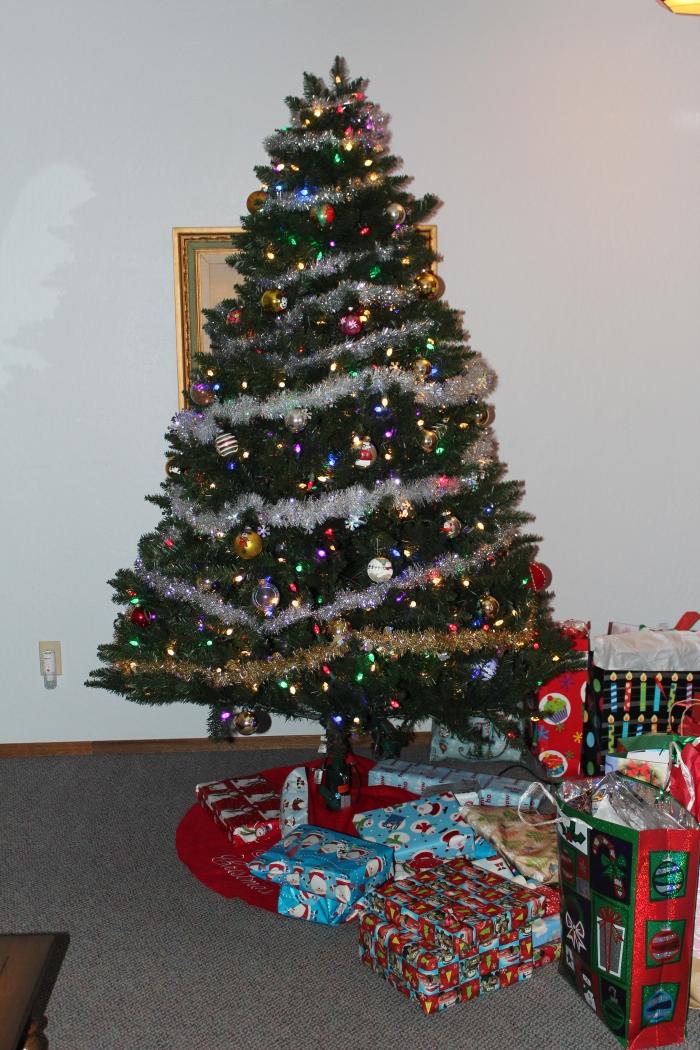Christmas Eve 2015 (3)